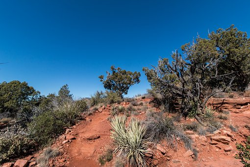 Sedona, Trail, Desert, Arizona, Landscape, Hiking, Red