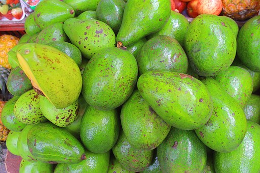 Avocado, Gallery, Fruit, Green, Food, Healthy