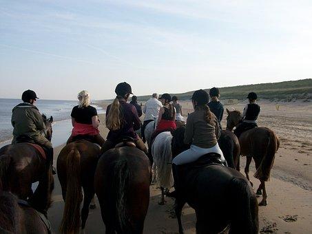 Horses, Beach, Beach Ride, Spring, Cosy, Horse, Group