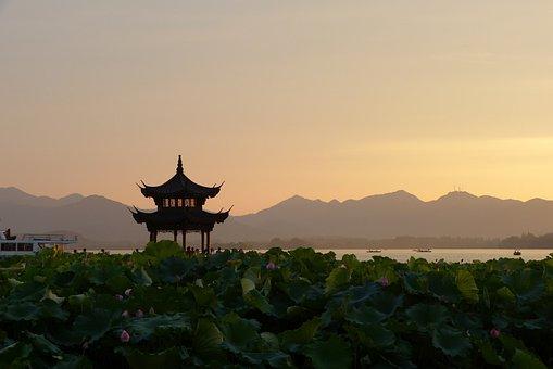 Sunset, China, Pagoda, Lotus Flowers