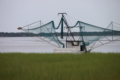Boat, Shrimp Boat, Coastal, Commercial, Shrimp, Fishing