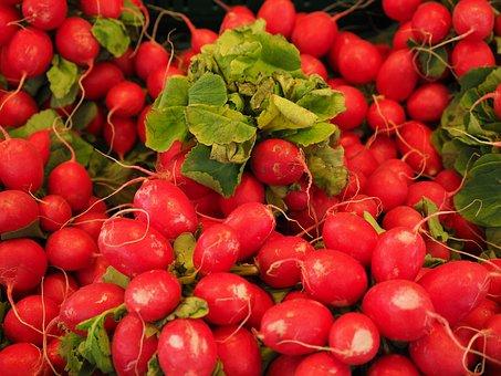 Radishes, Red, Vegetables, Eat, Food, Healthy, Vitamins