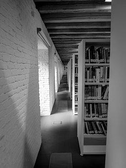 Library, Books, Shelves, Light