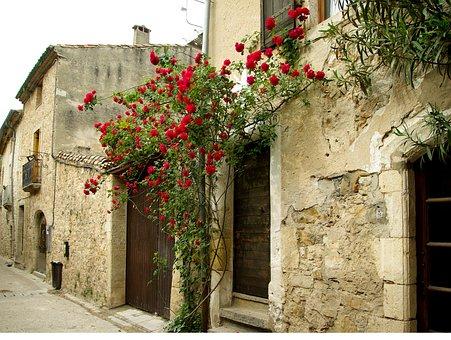 Cévennes, Medieval Village, Lane, Pavers, Rosebush