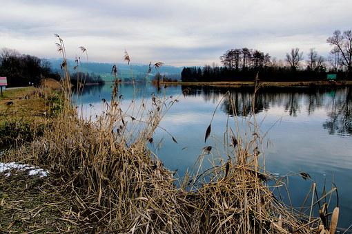 River, Reuss, Nature Conservation, Nature