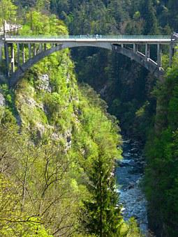 Bridge, High, Dangerous, Gorge, Abyss, Forest, Nature