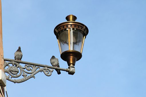 Lamp, Street Lamp, Light, Fitting, Birds, Pigeon