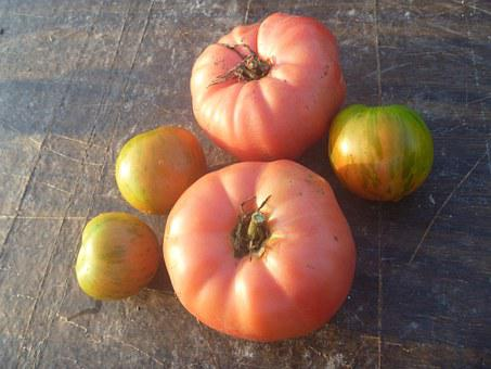 Tomato, Brandywine, Tomatoes, Heirloom, Food, Vegetable