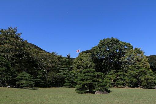 Japan, Flag, Woods, Landscape, Natural, Garden, Green