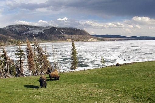 Winter, Yellowstone National Park, Wyoming, Frozen Lake
