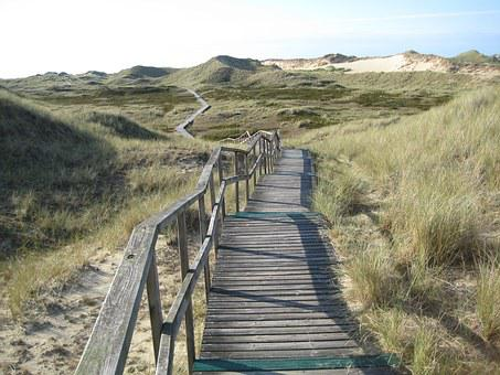 Island, Amrum, North Sea, Dune, Sand, Boardwalk