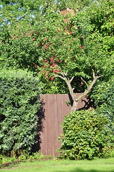 Garden, Gateway, Gate, The Entrance To The Garden