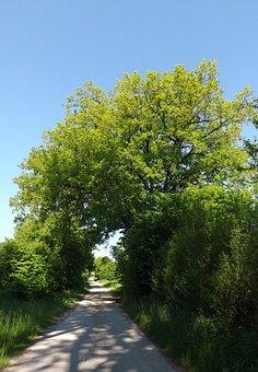Away, Nature, Summer, Bavaria, Oberschönenfeld
