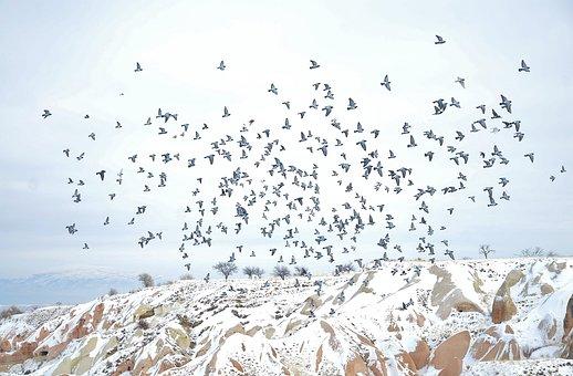Cappodocia, Winter, Nature, Snow, Frozen, Ice, Sky