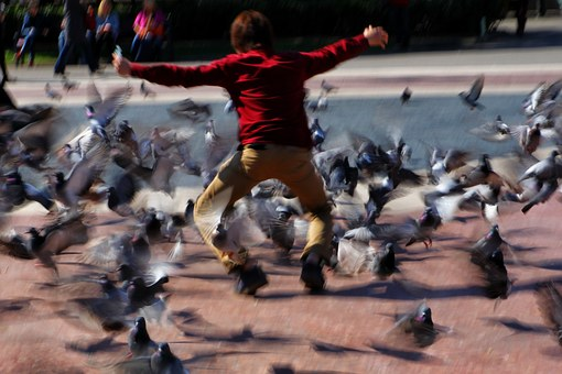 Child, Play, Pigeons, Jumping, Plaza Catalunya