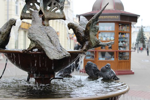 Fountain, Russia, Water, Drops, Pigeons