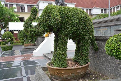 Topiary, Elephant, Hedge, Leaf, Animal, Design, Park