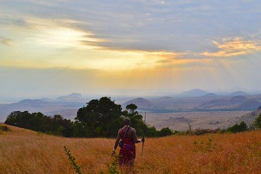 Clouds, Cropland, Dawn, Daylight, Dusk, Grass