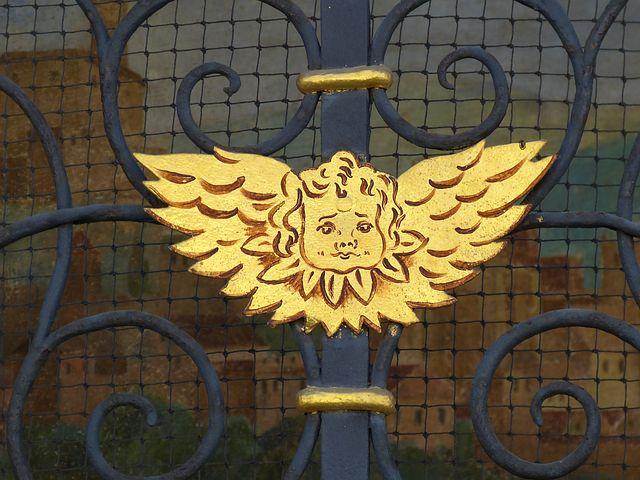 Angel, Wing, Little Angel, Angel Face, Heavenly