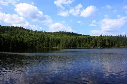 Whale, Lake, Superior National Forest, Usa, Minnesota