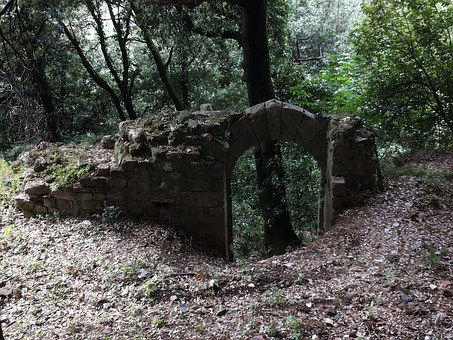 Italy, Ruin, Port, Ancient Times, Forest, Mystical