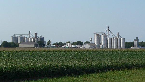 Byron, Nebraska, Fields, Crops, Agriculture