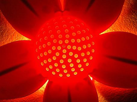 Lamp, Nightlight, Flower, Pink, Glow