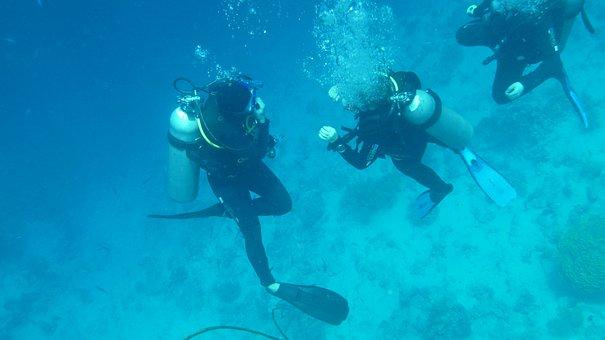 Divers, Diving, Underwater, Ocean, Water, Sea