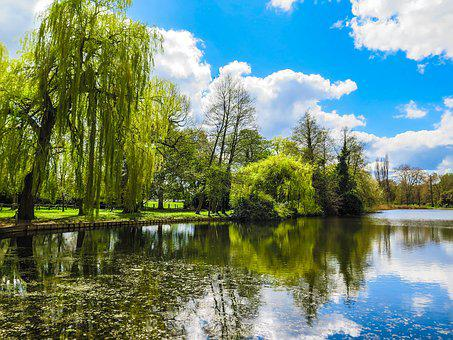 Thames, Runnymede, Spring