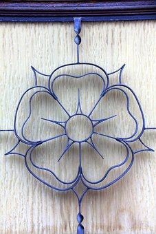 Rose, Flower, Lippe Rose, Door, Blue