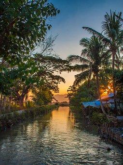 River, Palm Trees, Sunset, Nature, Sun, Mood