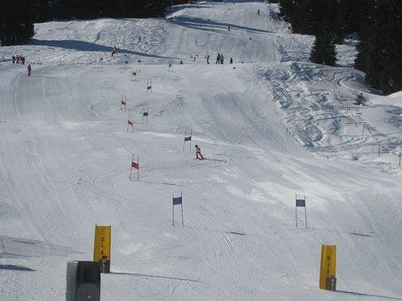 Ski, Race, Sports, Speed, Winter, Snow, Activity