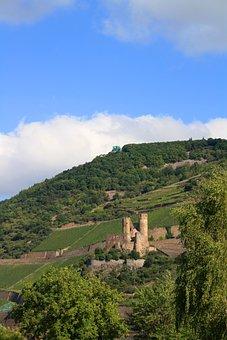 Burg Ehrenfels, Vineyard, Castle-bingen, Landscape