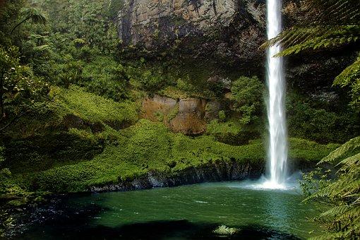 Bridal Veil Fall, New Zealand, Waterfall, Nature