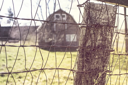 Netting Wire, Farm, Farm House, Barn, Fence, Wire Mesh