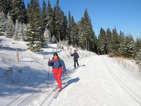 Austria, Panoramaloipe, Skis, Winter, Mountains, Snow