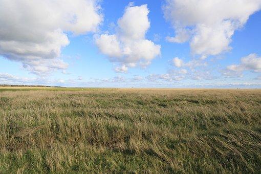 St-peter-ording, Salt Meadow, North Sea