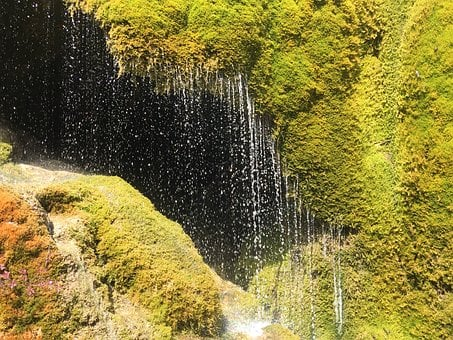 Moss, Wet, Drop Of Water, Water, Cave, Save Energy