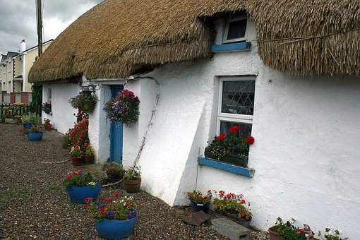 Ireland, Door, Ballyedmond, House, Home, Thatch