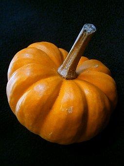 Pumpkin, Gourd, Miniature Pumpkin, Decorative, Ribbed
