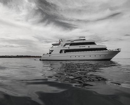 Red Sea, Sea, Yacht, Diving, Water, H B, Captain