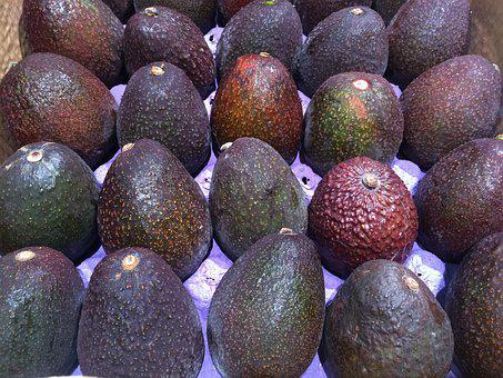 Avocado, Avogado, Pile Up, Fruit, Seiyu Ltd, Living