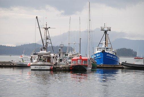 Juno Alaska, Fishing Boats, Juno Harbor, Boats, Harbour