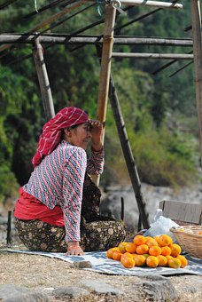 Orange, Seller, Vendor, Roadside, Lady, Woman, India