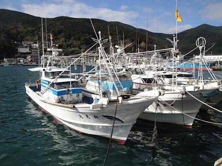 Japan, Tsushima, Asia, Sea, Boats, Japanese, Scenic