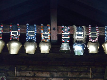 Cow Bells, Pasque Flower, Collection, Golden, Silver