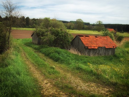 Germany, Farm, Rural, Country, Countryside, Dirt Lane