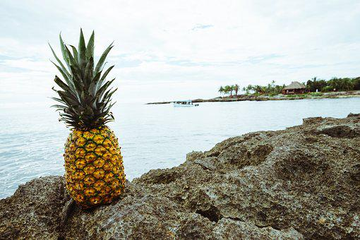 Boat, Fruit, Golden, Mexico, Ocean, Palm Trees