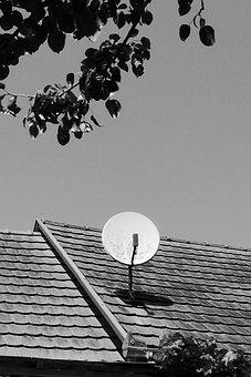 Satellite Dish, Tv, Watch Tv, Reception, Transmitter