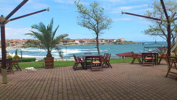 Sozopol, Sea, Bulgaria, End Season, Cat, Café